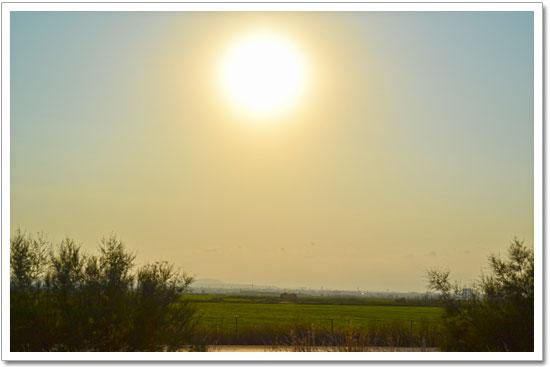 puesta de sol albufera de valencia